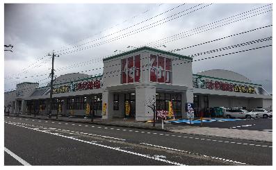 薬局 店舗 スギ